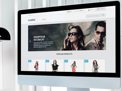 Paquetes de Diseño Web: Tienda Virtual
